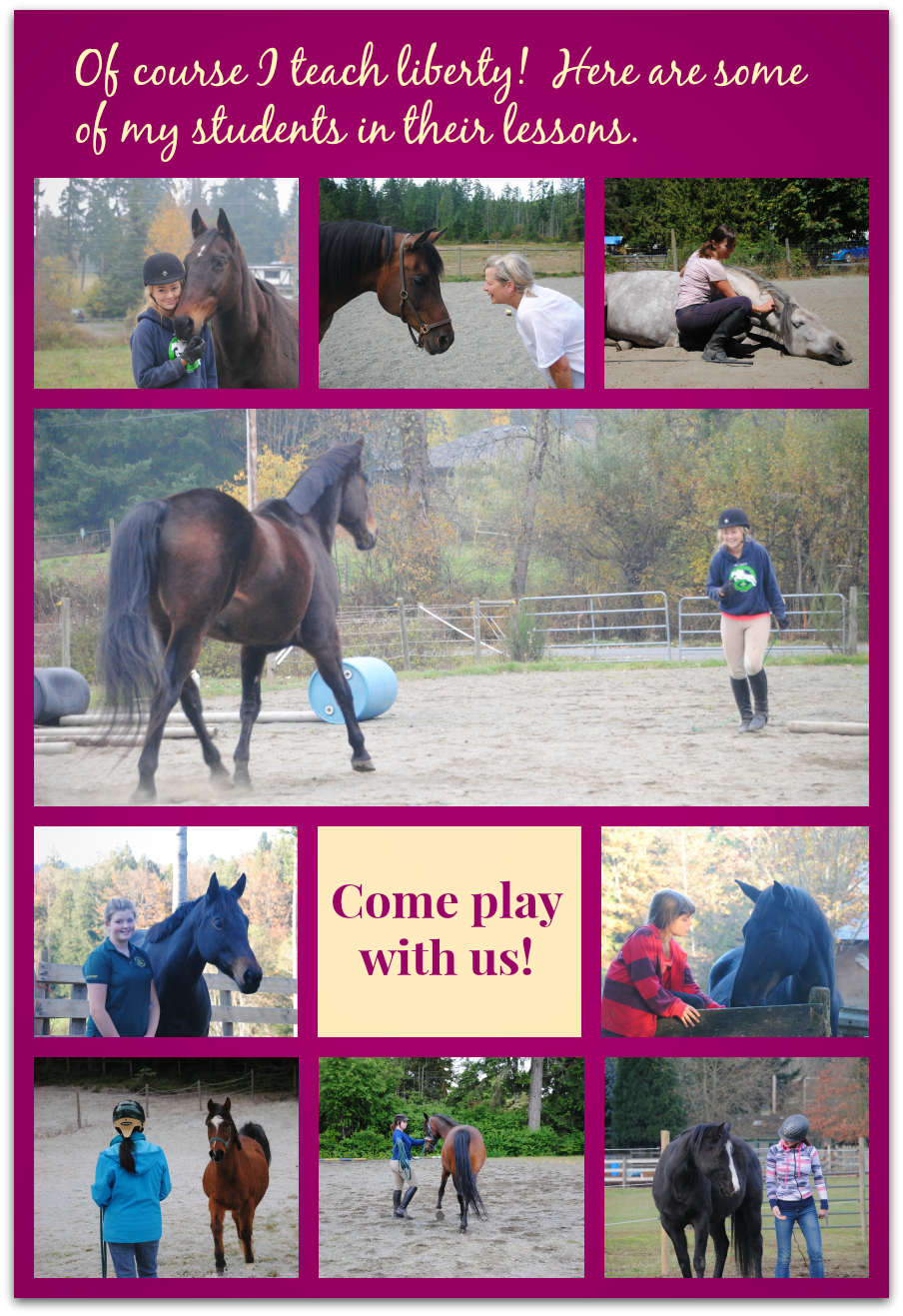 fancy lesson collage