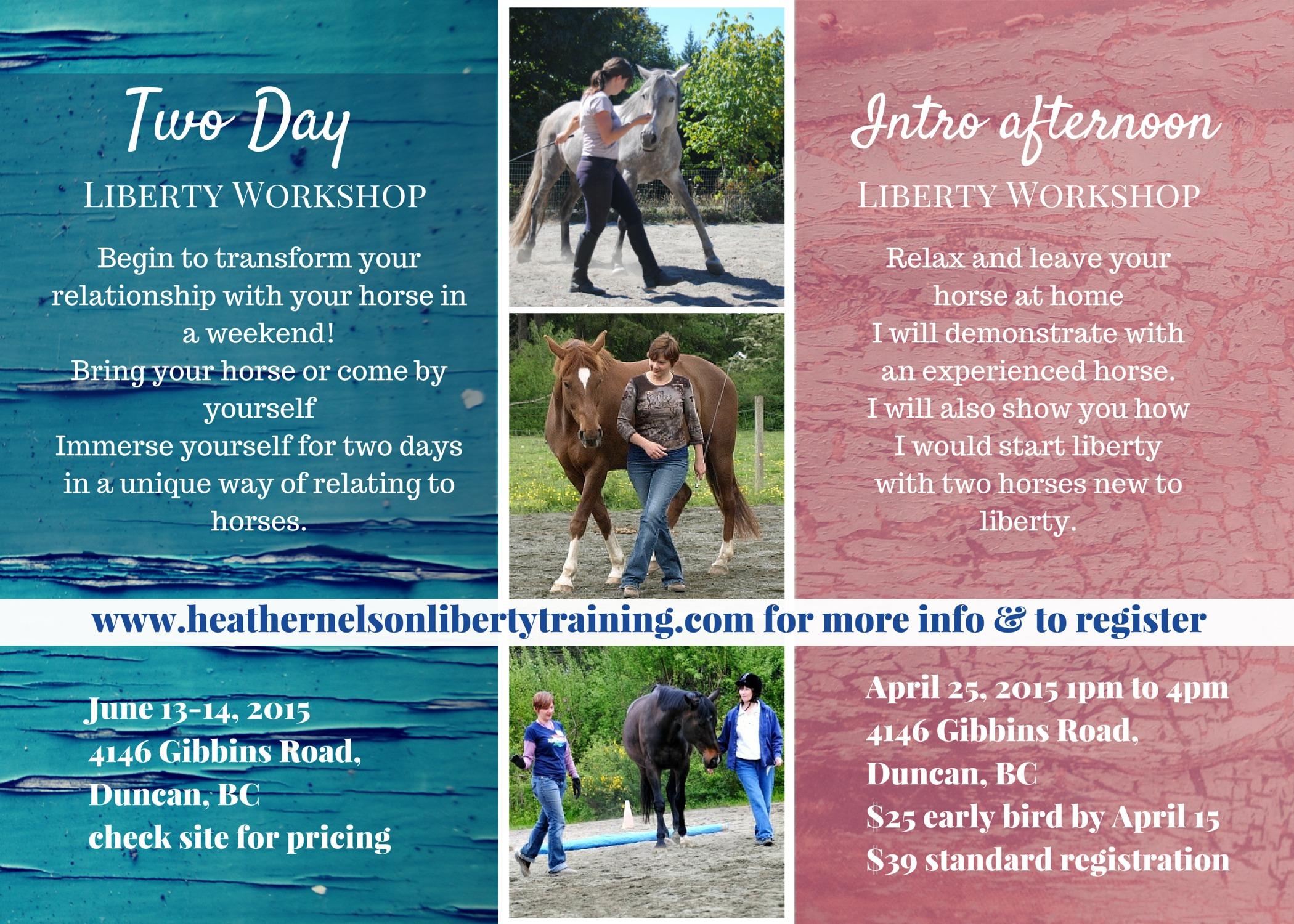 Heather_Nelson_Liberty_Workshop