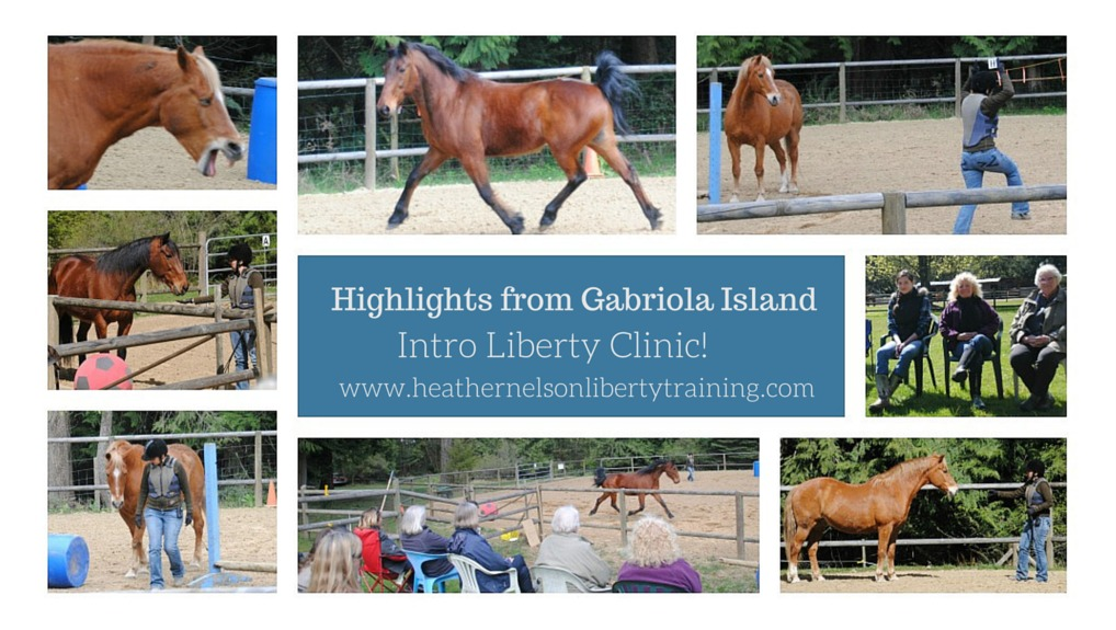 Highlights from Gabriola