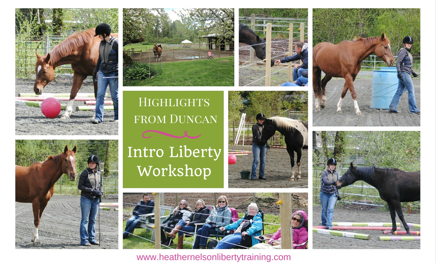 Heather_nelson_liberty_training_workshop_duncan_april_2015
