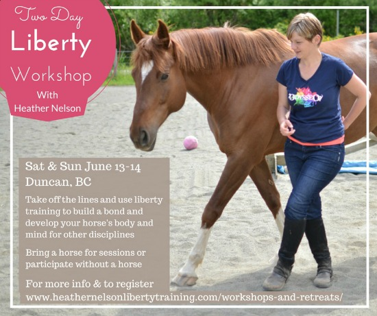 june_13_liberty_workshop