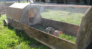 chickentractor