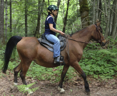 Danna rides Lacey bitless on the trail