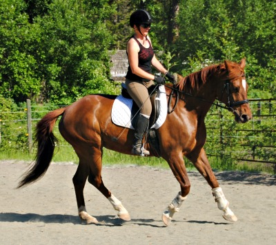 heather_nelson_liberty_training_cantering
